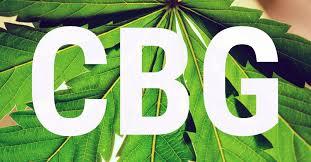Vad är CBG?