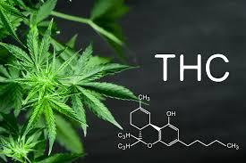 Vad är THC?