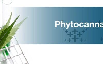 Vad är fytocannabinoider?